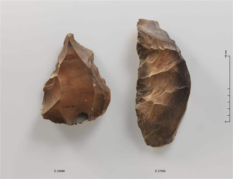 nucleus-levallois-histoire-taille-silex